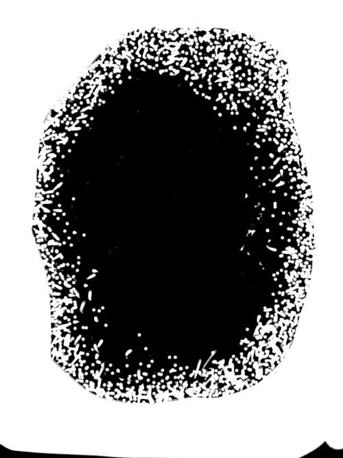 20131105-194549.jpg