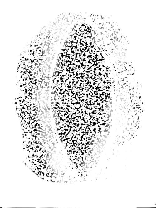 20131116-100850.jpg